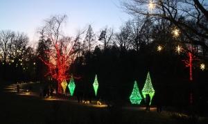 Longwood Gardens 2014-12-21 17.13.52