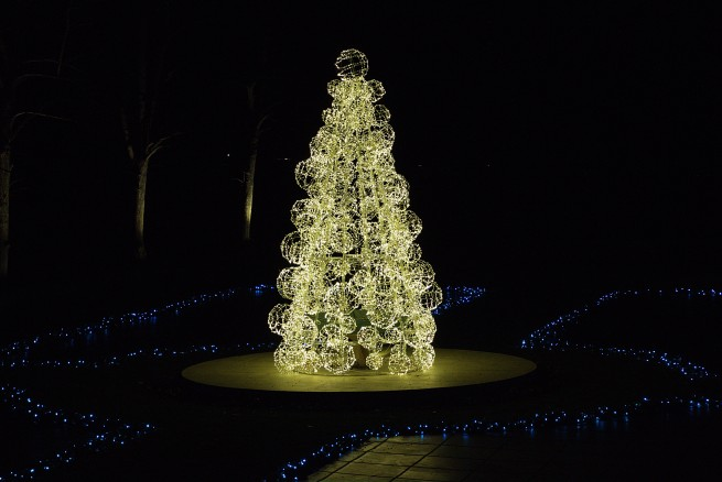Tree of light 2015-12-06 18.40.13.jpg