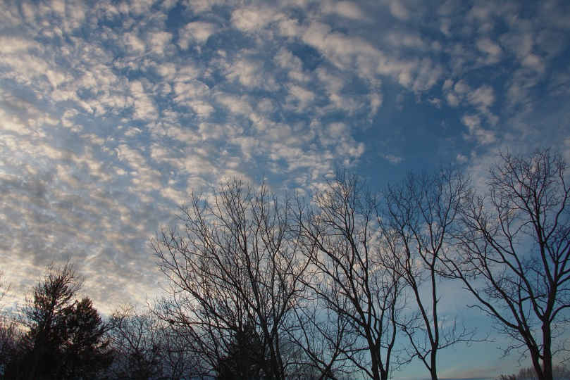 Afternoon sky AFF 2016-01-20 17.42.28.jpg