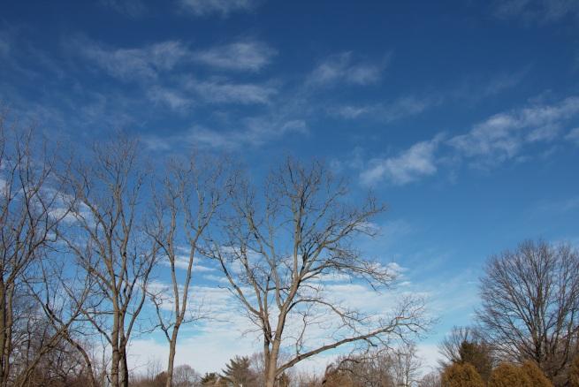 Blue sky white clouds AFF 2016-01-30 10.39.32.jpg