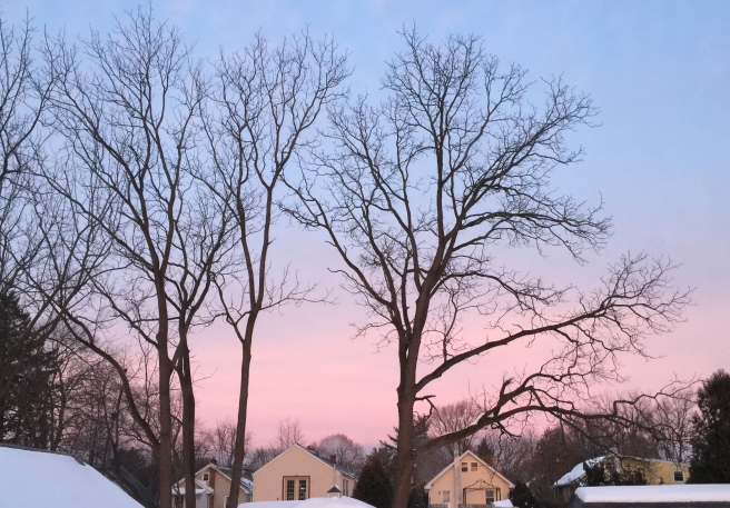 Pink sunrise 2016-01-26 copy.jpg