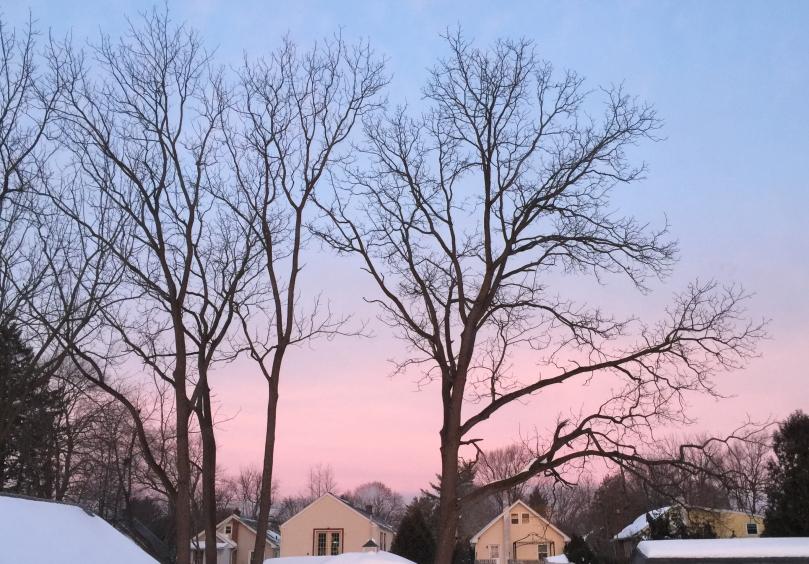 Pink sunrise 2016-01-26 copy.jpg