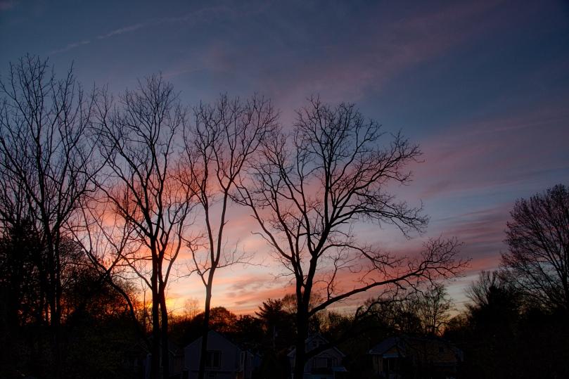 Late sunset AU 2016-04-19 19.50.jpeg
