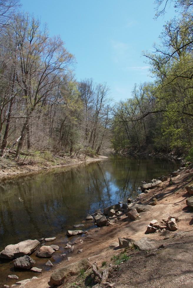 The Creek 2016-04-16 13.40.50.jpg